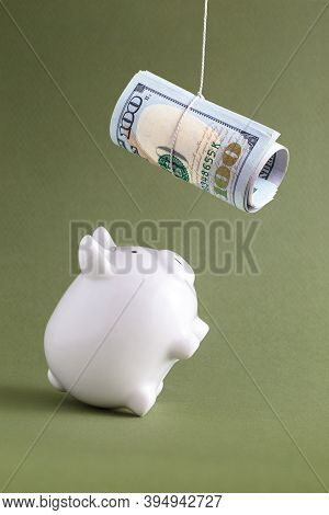 Piggy Bank On Hind Legs Begging For Rolled Dollars. Financial Savings Intention For Money Abundance,