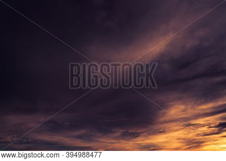 Golden, Purple, And Dark Sunset Sky. Birds Flying On Dark Sunset Sky. Romantic And Tranquil Scene. A
