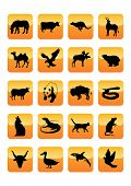 Set 3 of Wild Animals Icons. Vector Illustration. Other sets of the same style look in gallery. poster