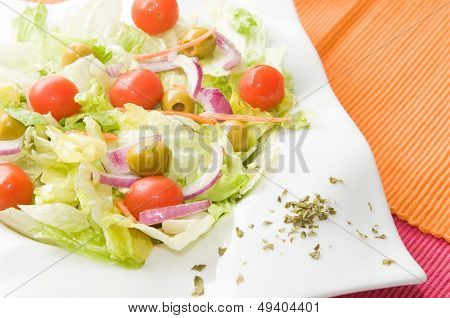 vegetarian salad with vegetables onion and tomatoes