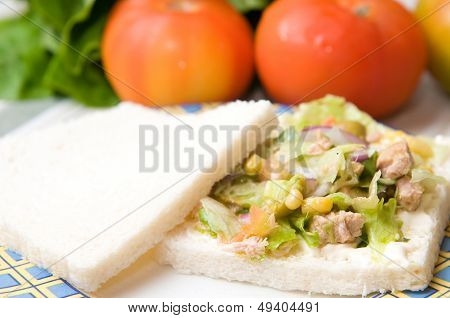 salad sandwich with tuna and vegetables