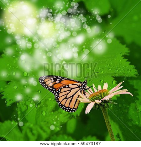 abstract spring background in green color