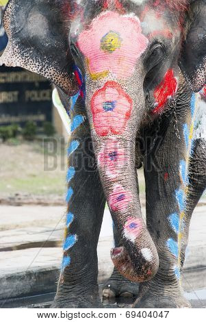 Painted Elephant In The Water Splashing Festival In Thailand
