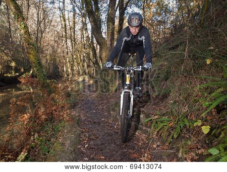 Man Practicing Mountain Bike In The Forest