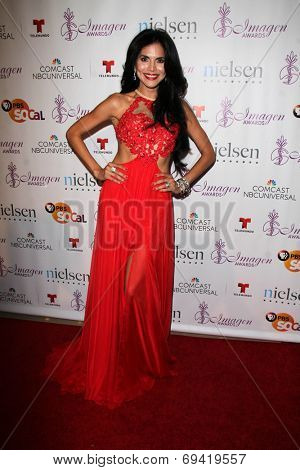 LOS ANGELES - AUG 1:  Joyce Giraud at the Imagen Awards at the Beverly Hilton Hotel on August 1, 2014 in Los Angeles, CA
