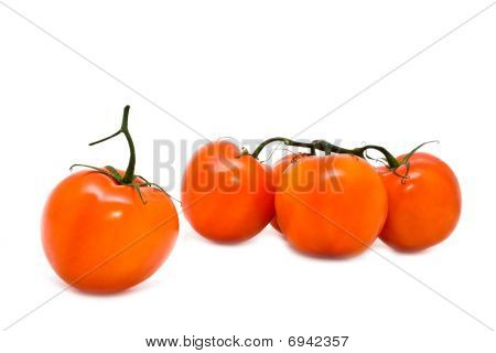 Group Of Red Juicy Tomatoes