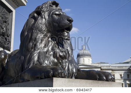 London - lion from Nelson memorial on Trafalgar square
