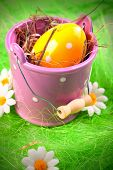 Easter Chick, eggs and basket / bucket concept. poster
