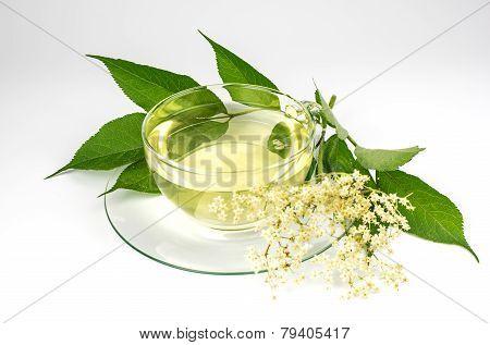 Elder tea and elder blossoms