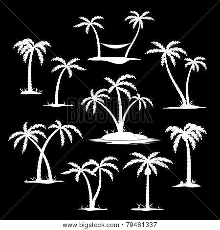 Coconut tree silhouette icons