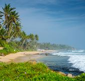 Sandy beach with palm trees and ocean with waves. Midigama beach, Sri Lanka poster