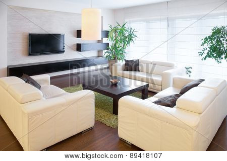 Comfortable white sofas at living room, horizontal poster