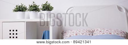 Teenage Girl Bedroom Interior