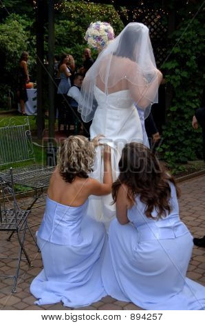 Bride And Bride Maids