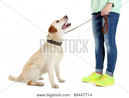 Cute dog with girl isolated on white background