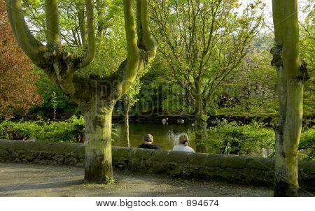 England Derbyshire Peak District National Park, Bakewell