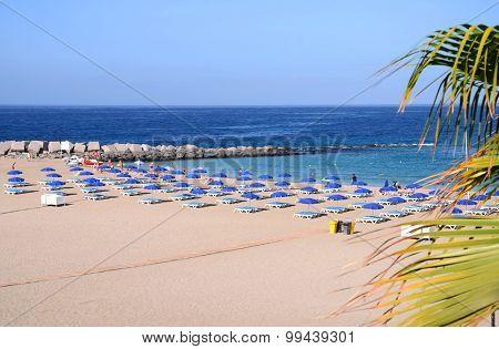 Beautiful Playa de las Vistas in Los Cristianos on Tenerife, Spain
