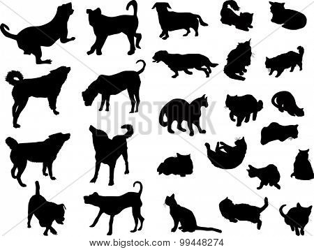 illustration with set of ten dogs and fifteen cats isolated on white background