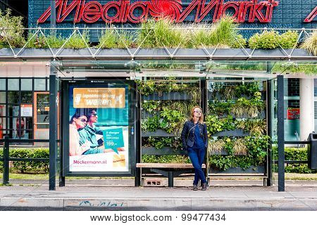 Eindhoven Green Bus Stop