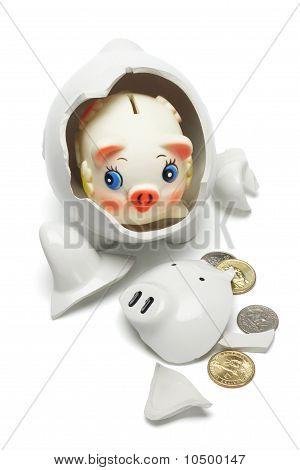 Coloful Baby Piggybank