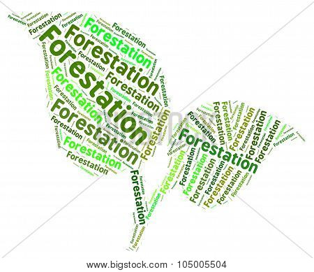 Forestation Word Means Forested Copse And Words