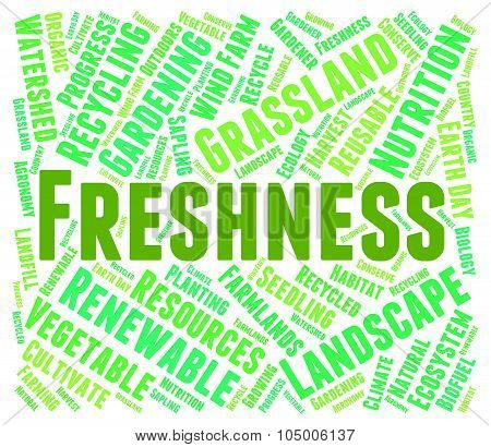 Freshness Word Represents Freshen Freshly And Natural
