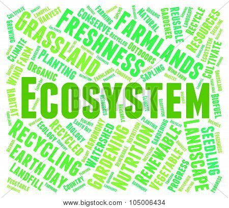 Ecosystem Word Showing Environment Biosphere And Text poster