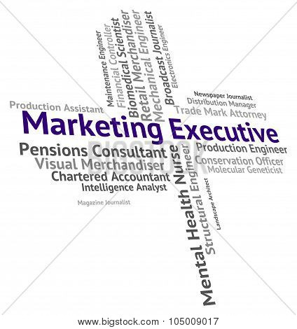 Marketing Executive Indicates Managing Director And Boss