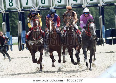Carreras de caballos.