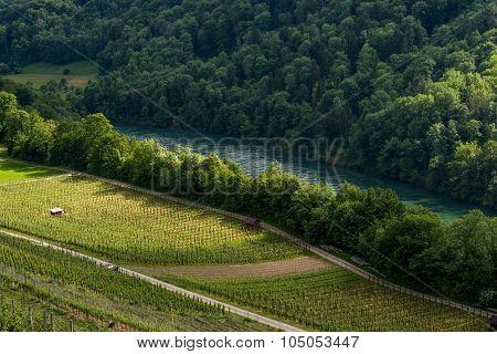 Rhine River View From Buchberg In Switzerland