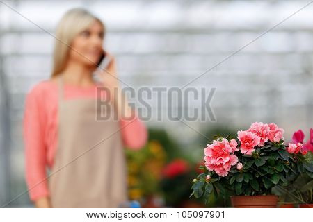 Nice florist standing in the green house