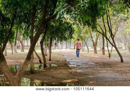 Man walking a dirt path with trees