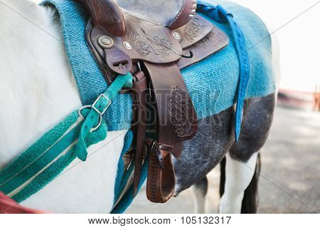 Close up of pony saddle. Closeup of a white and gray pony horse. poster