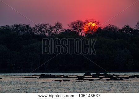 Zembezi Sunset