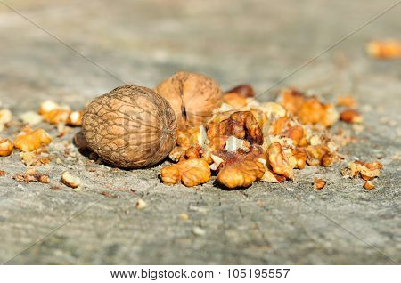 Walnuts on a tree stump.Juglans regia.