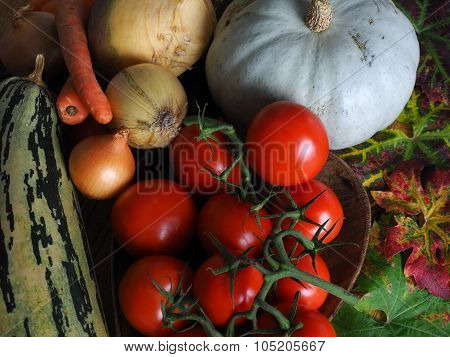Autumn Harvets Rustic Vegetables