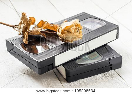 The Old Video Tapes And Dried Rose