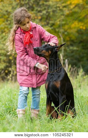 Little curly girl caress a big dobermann in park, focus on a dog.