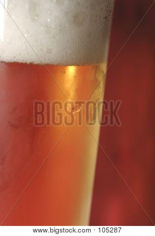 Beer - Macro