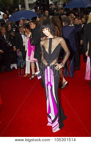 CANNES, FRANCE - MAY 18: Bai Ling attends the Premiere of 'Jimmy P. (Psychotherapy Of A Plains Indian)' at The 66th Annual Cannes Film Festival on May 18, 2013 in Cannes, France.