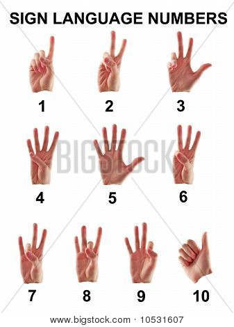 Sign Language Numbers