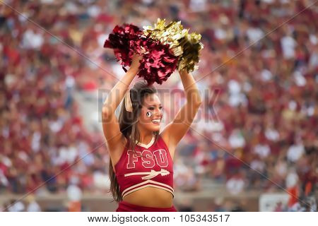 Fsu Cheerleader