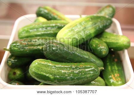 Famous pickles in New York Deli