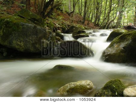 Mountain River Stream. Forest.
