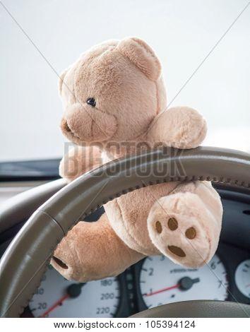 Teddy Bear In Car