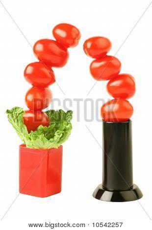 Creative Tomato Couple