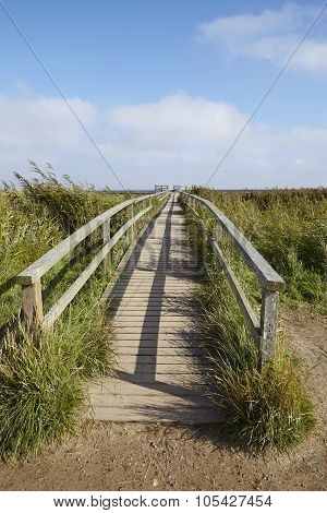 Amrum (germany) - Wooden Bridge In The Landscape