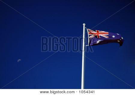 Ozzie Flag