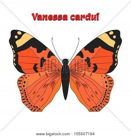 Butterfly vanessa cardui vector illustration