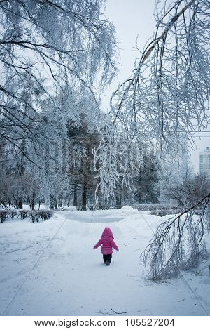 Little Girl Walking In The Iced Forest (narnia)